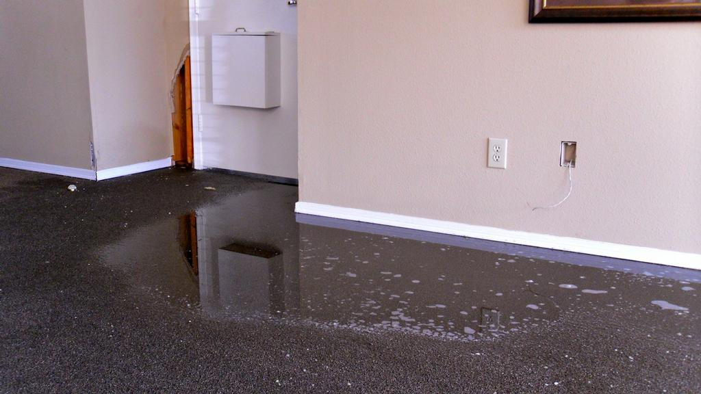 Water Damage Restoration - Chem-Dry of Vancouver